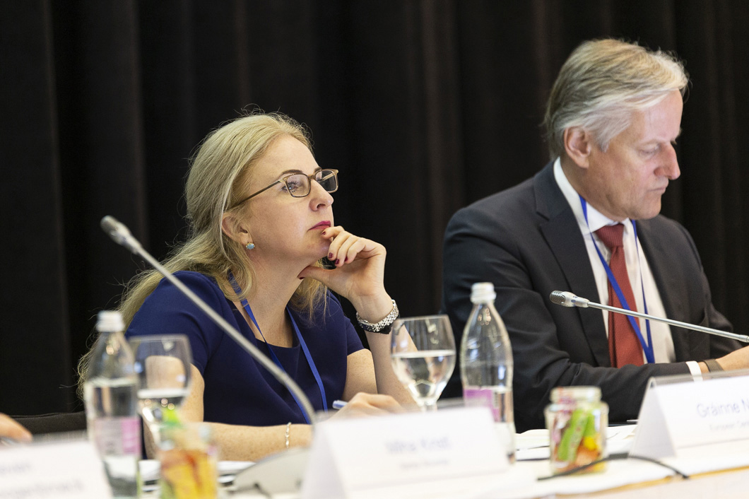 Gráinne Nevin. Jst Coordinator Of Abanka, European Central Bank